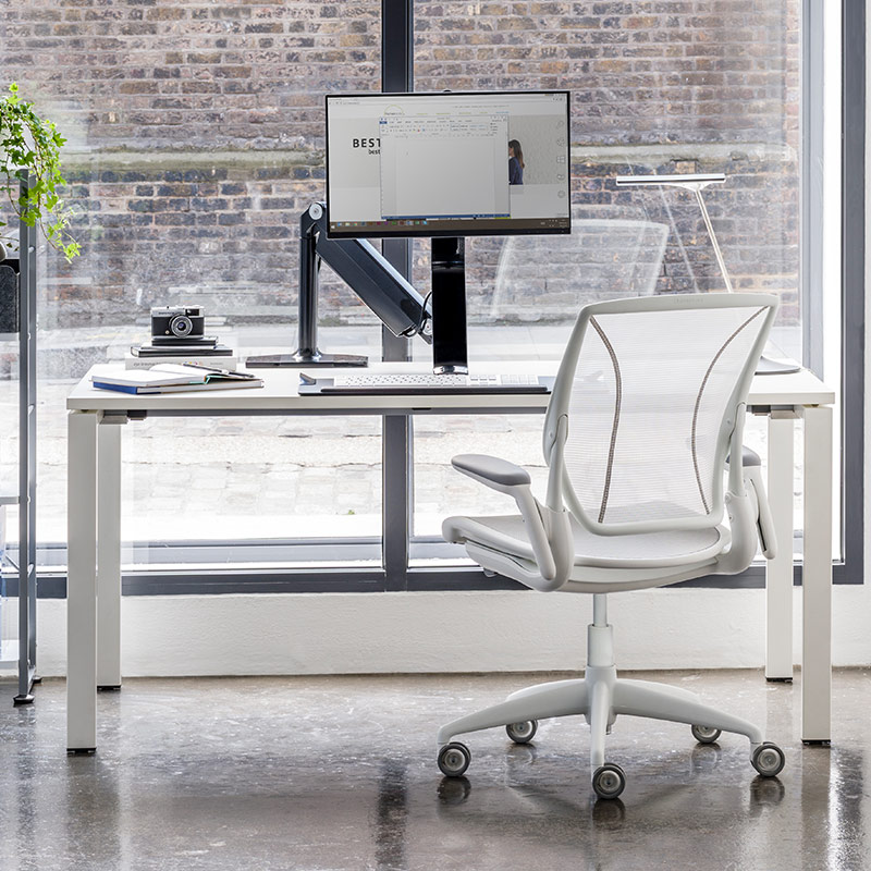 Humanscale Diffrient World Mesh Office Chair